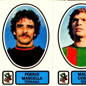 1977-78. Figurine Panini. Mascella-Codogno