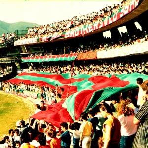 1985-06-09. Ternana-Nocerina 3-0