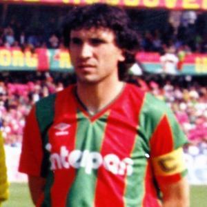 1990 Sciannimanico